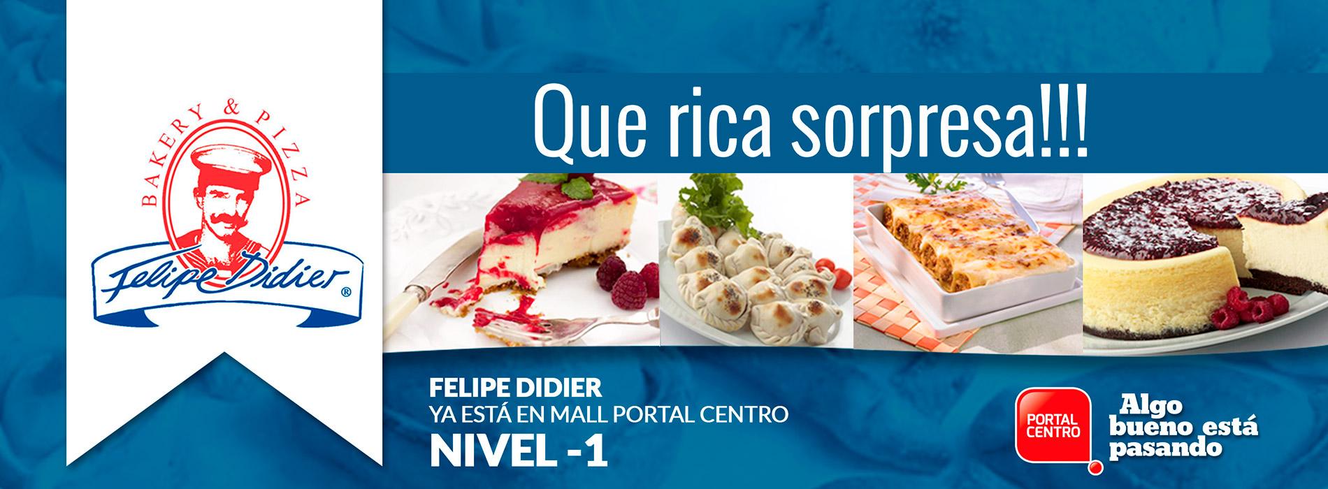 Banner_web_felipe_didier-1